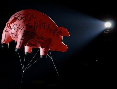 Cerdo Volante